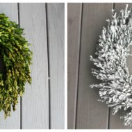 When your boxwood wreath goes bad …
